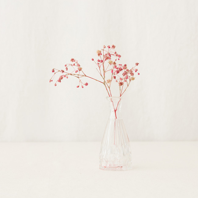 Preserved Flower After 1000 days