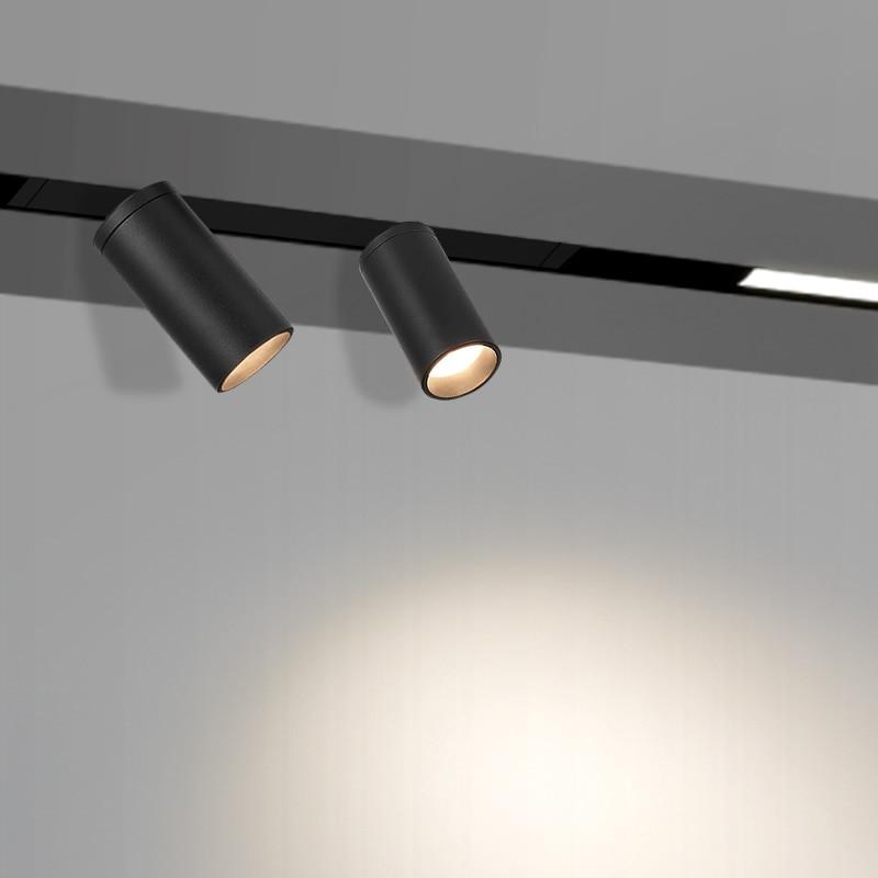 spot light magnetic system
