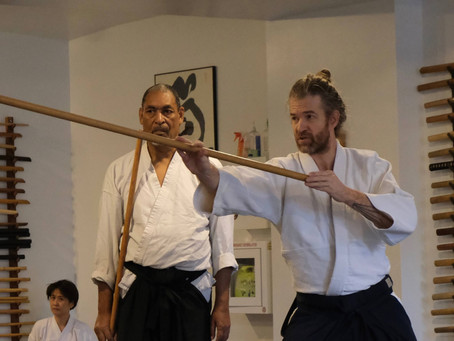 Aikido Adult Beginner's Series - Feb 8th - March 14th