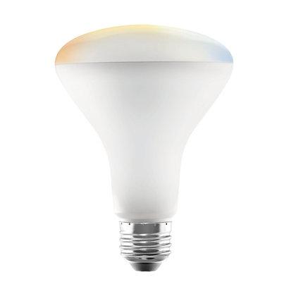BR30 Smart Bulb Color Temperature Adjustable