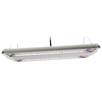 Blue Spectrum Dual 14in LED Plant Grow Light