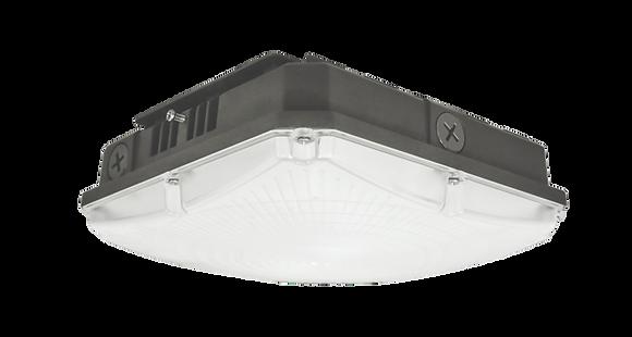 P Series 40W LED Canopy