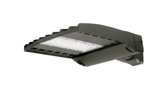 P Series 100W Area Light 13,700 Lumen - Toolless