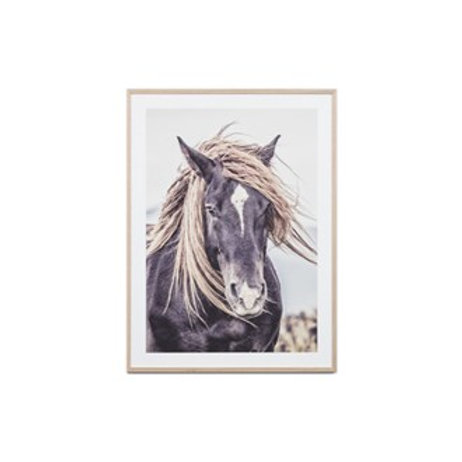 Lone Mustang Print - Framed