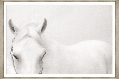 Horse - Natural and White