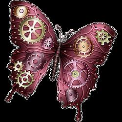 PNG papillon jeunesse.png