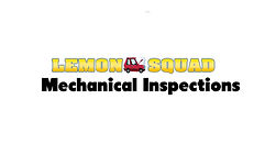 Lemon Squad.jpg