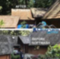 roof softwash wood shake.jpg
