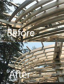 before after lattice.jpg