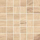 Coralwood - Mosaic.jpg
