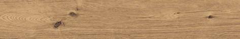 Coralwood - Nut.jpg
