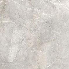 Royal Light Grey 60 x 60