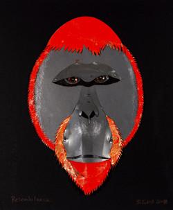 Resemblance - orangutan