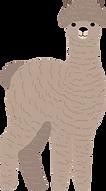 alpaca-5116935_1280.png