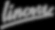 Logo_text-Linova-300kopie_ZWW.png