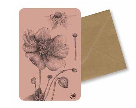 Carte postale Pavot + Enveloppe