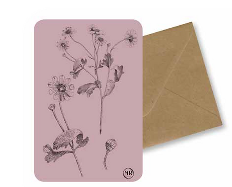 Carte postale camomille + Enveloppe