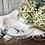 Thumbnail: Assiette creuse 17,5 cm hirondelle