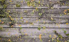 Blomster på Wood