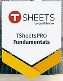 Tsheets%20pro%20fundemental%20badge_edit