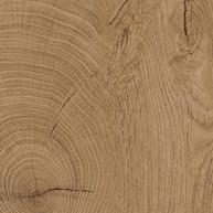 Oak ENDgrain.jpg