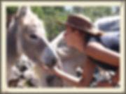 Cabalgatas, Reiten, Horseback riding, Santiago, Chile