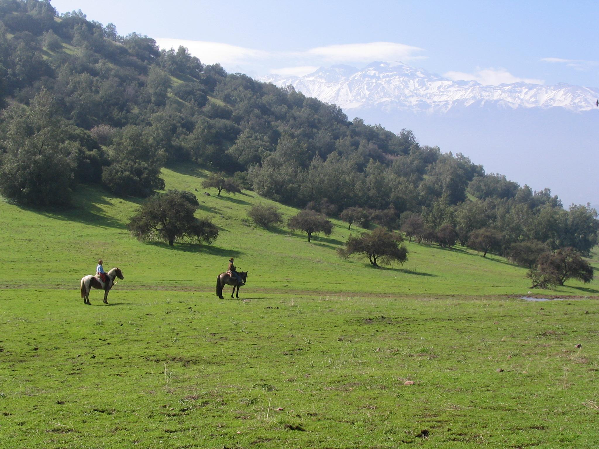 Horseback riding Santiago