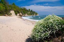 Пляж яв 150 метрах от Антика