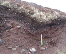 Scottish Higher Level Geography Soils / Biosphere Fieldwork