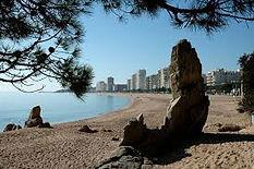 A Level Geography Fieldwork Coasts Spain