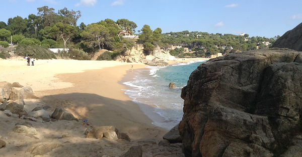 Geography field studies coasts, place, tectonics in Spain