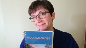 Mood Manager  - Your yearly joy diary is HERE!✨✨