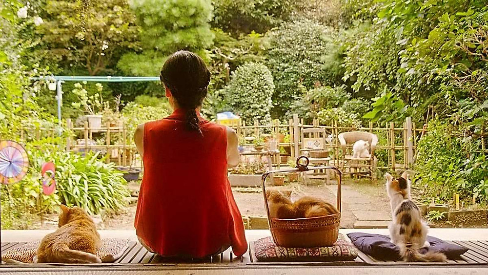 Mikako Ichikawa sits on a porch with three cats, looking out into a green garden. From the movie Rent-a-cat by Naoko Ogigami.