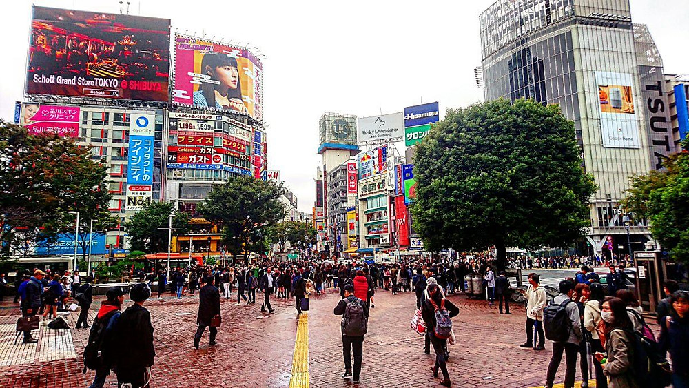 Shibuya Crossing © Husky Loves Japan
