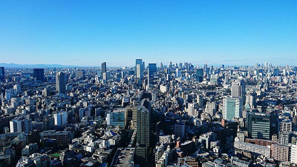 Tokyo skyline, seen from the restaurant floor at Ebisu Garden Tower.