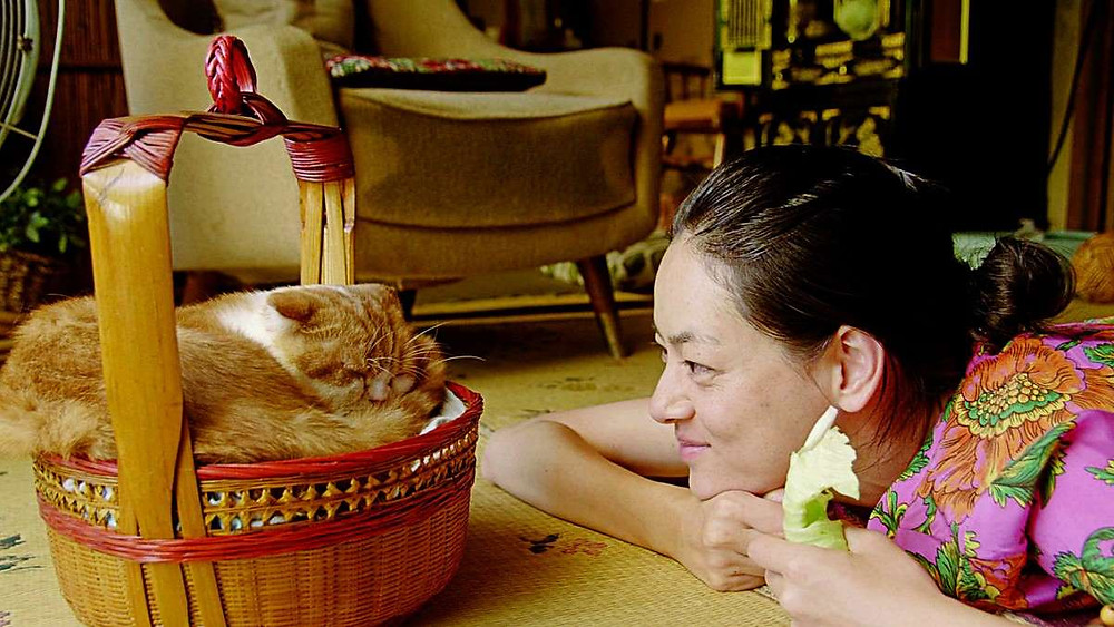 Mikako Ichikawa looks at a cat in a basket, from the movie Rent-a-cat by Naoko Ogigami