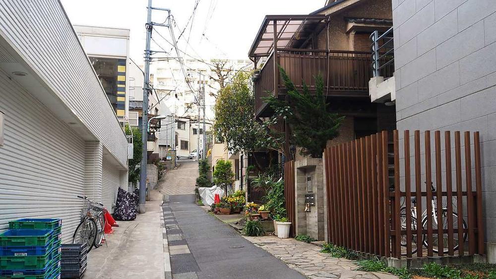 Tokyo neighborhood. A quiet street in Jiyugaoka.