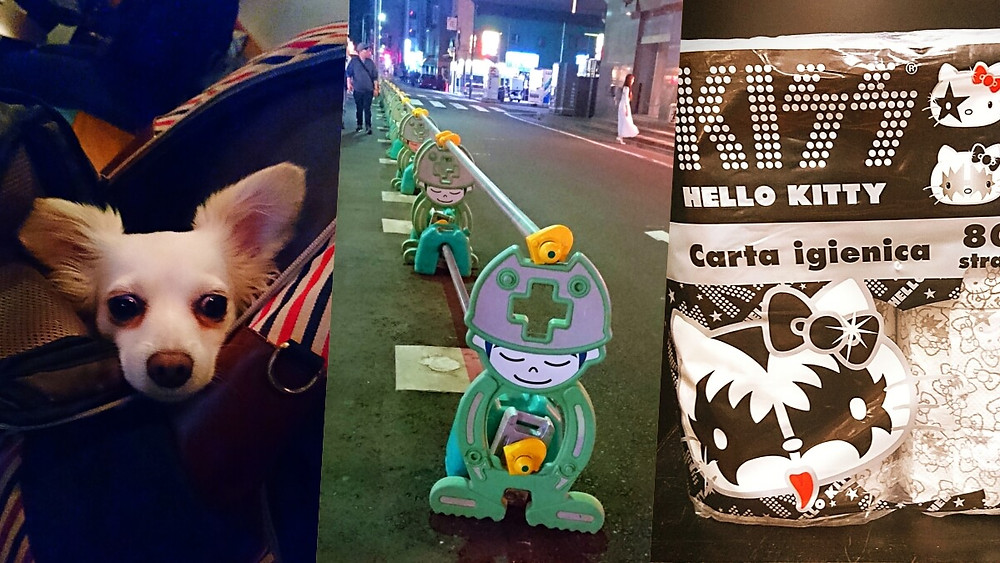 Kawaii Japan: Purse dog, road sign and Hello Kitty toilet paper