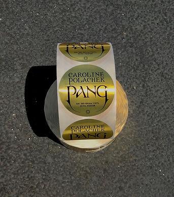 Caroline Polachek shiny PANG Stickers