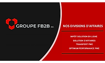 Logo site web Groupe FB2B corpo 3.2_Page