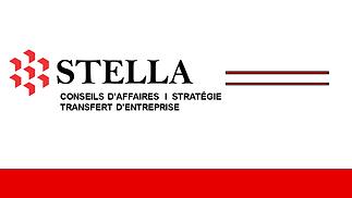 Logo STELLA 210908F10241024_1.png