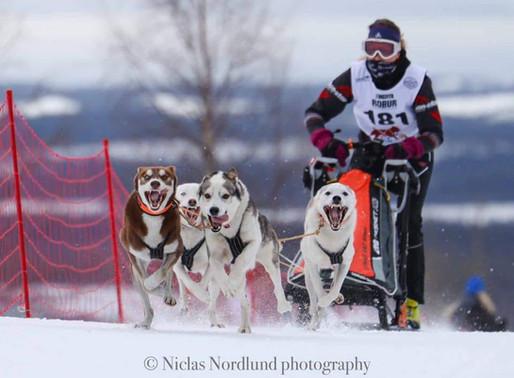 IFSS European Championship Snow Asarna 2020 Dag 1