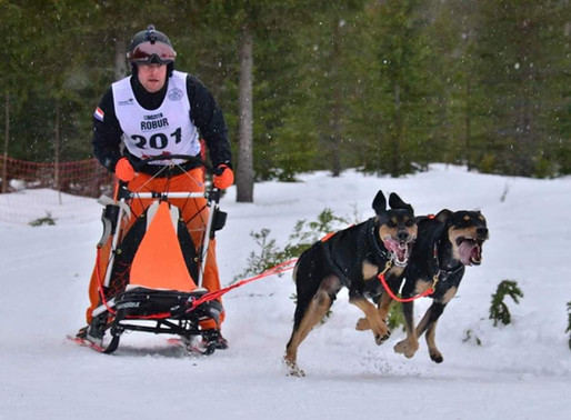 IFSS European Championship Snow Asarna 2020 Dag 3
