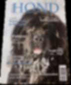 Onze_Hond_cover_Kivo_Kempentrail_2019pn