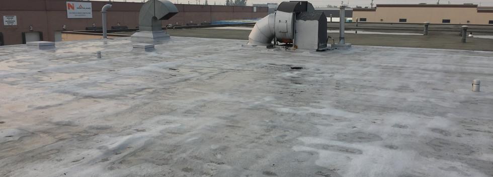 Roof2fix.JPG