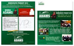 Political Campaign Mailer