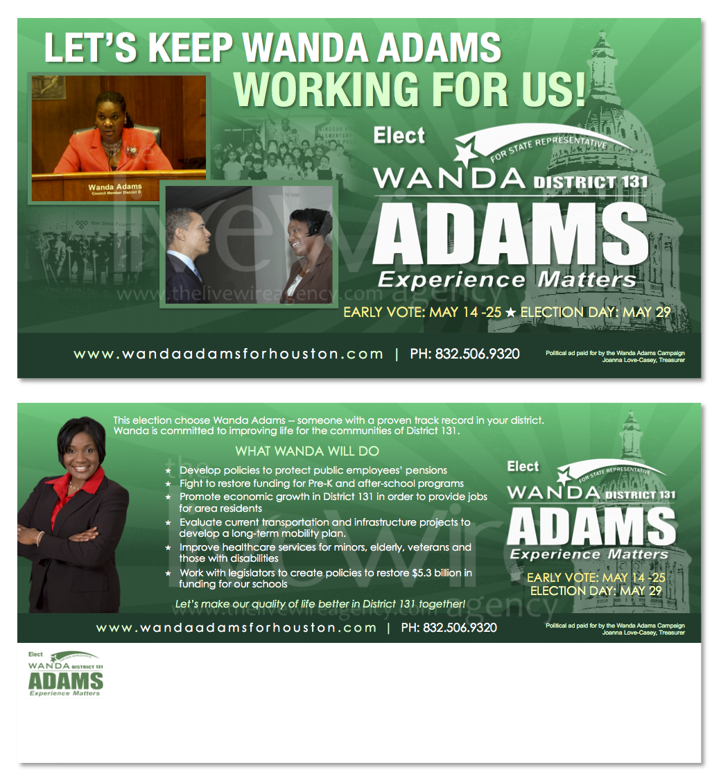 Political Campaign Mailer