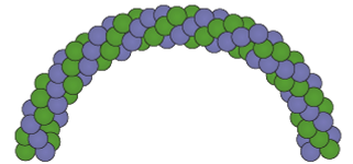 spiral-pack-balloon-arch-2019.png