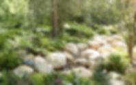 Landscape Design Image.jpg