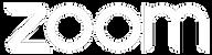logo zoom-11.png